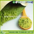Japonais matcha poudre de thé, Matcha extrait de thé vert, Matcha organique thé vert