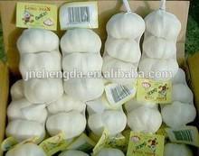 good pure white garlic from china