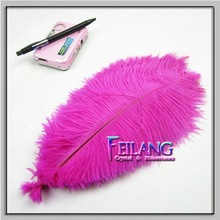 Best Supplier In China Best Quality Dyed Ostrich Feathers