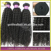 Alibaba China mongolian kinky curly hair human virgin hair hot new products for 2015