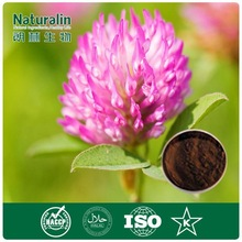 Red Clover Extract for pet food additives