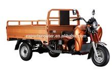 Diesel engine motor bike of cargo trike