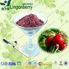 Raspberry seed extract ,Raspberry Ketone