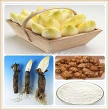 inulin/inulin manufacturer china/food grade inulin