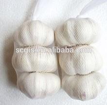 high quality mesh package garlic/natural garlic/new yield garlic