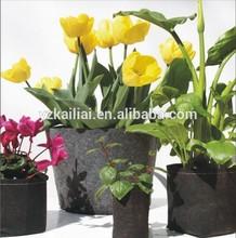 flora felt living wall planter vertical garden grow bags