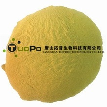High quality brewer yeast powder for all pet food ( Chinese largest brewer yeast manufacturer)