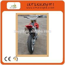 Gas New Air Cool Disc Brake dirt bike250CC Sports Bike Motorcycle