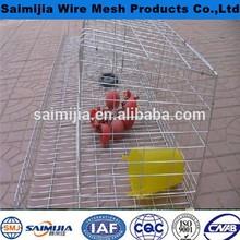 Anping saimijia pvc coated hexagonal wire mesh