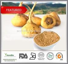 Organic Maca extract Wholesale, Natural Herbal Medicine for big penis
