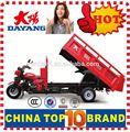 China beiyi dayang marca 150cc/175cc/200cc/250cc/300cc trike motocicleta kits