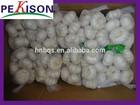 Fresh garlic 2014 Crop normal white Natural garlic