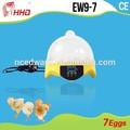 bambino incubatore più caldi digitale professionale uovo di gallina incubatore hatcher rifornimento della fabbrica 7 pz automatico uovo incubatore