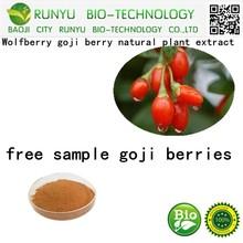 Wolfberry goji berry natural plant extract,free sample goji berries