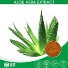 herbal extract type aloe vera plant extract powder