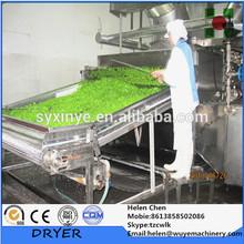 Vegetable And Fruit Dehydrator/Vegetable Drying Machine/Vegetable Belt Dryer