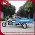popüler sıcak satış mavi elektrik üç tekerlekli kapalı motosiklet güçlü motor