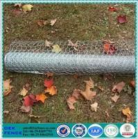 Chicken Wire Netting 3/4 Inches
