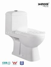 Chaozhou economic One-piece washdown toilet