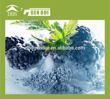 china Organic frozen blackberry
