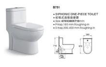 /B751 Good Quality Toilet Soap Portable Toilet Price Hidden Cameras for Toilet