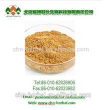 Good quality Guarana Extract Powder/guarana seed extract/Guarana Caffeine 10%