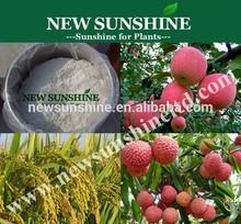 Paclobutrazol, growth regulator gibberellic acid