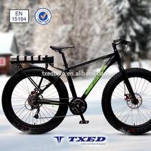 Trendy design 36V electric fat bike