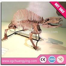 2014 dino park spinosaurus skeleton model of dinosaur