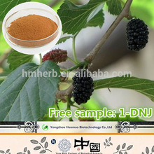 Factory supply free sample natural organic Mulberry Fruit Extract