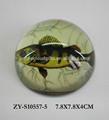 Wholesae de aumento cristal cristal de la bóveda pisapapeles diseño de los pescados