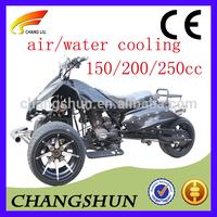 china 250cc racing buggy trike with ce