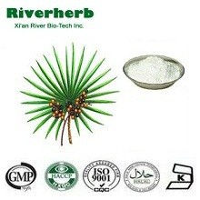100% Pure Saw Palmetto Extract Powder