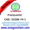 API-Praziquantel, High quality 55268-74-1 Praziquantel, EP/USP/CVP