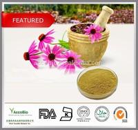 100% Natural Echinacea extract wholesale,Natural 4% Polyphenols Echinacea purpurea Extract in bulk