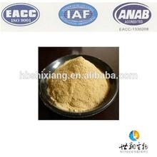 Natural Lactobacillus probiótico en polvo