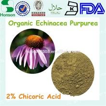 2% cichoric acid Echinacea Purpurea Extract