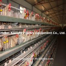 2015 profesyonel galvanizli otomatik tavuk katmanı kafesi satılık