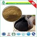Uv/hplc gmp 100% natural de alta qualidade natural black alho extrato da semente