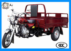 Zongshen Engine 3 Wheel Cargo Motorcycle/Tricycle