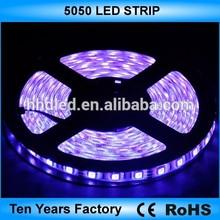 Best price 12v 60leds/m 5050 rgb led strip
