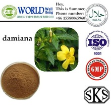 100% Natural Damiana Extract for male sex enhancement, Damiana leaf Extract powder 5:1,10:1,20:1