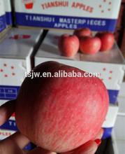 Pome Fruit Product Fresh Apple Type Fuji Apple sale by bulk