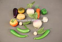 Vegetable model / biological / science toys