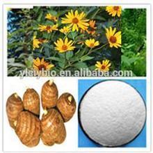 Chicory Inulin powder 90% /bulk inuline