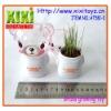 Grass head Grass toy Growing grass head Grass growing toy