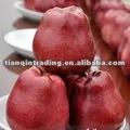 Red delicious manzana