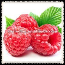 Raspberry leaf Extract