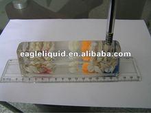 pen holder liquid customized floater inside paper weight liquid ruler