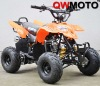 110cc ATV with auto engine